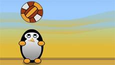 Волейбол пингвинов