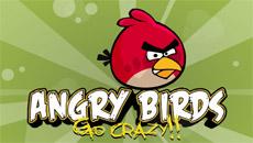 Angry Birds: Go crazy