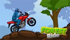 Мотогонки в лесу