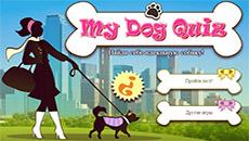 Какая собака тебе подойдет?