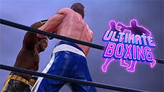 Бокс: последний раунд