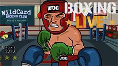 Бокс онлайн Первый раунд