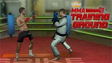 Тренировка бойца ММА